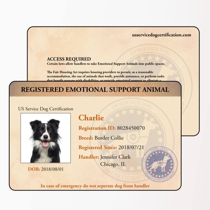 Florida Emotional Support Dog Certificate /& Photo ID