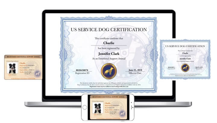 Esa Packages Us Service Dog Certification