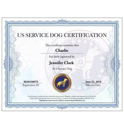 Service Dog Certification