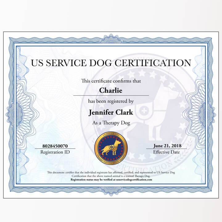 Therapy Dog Digital Package Us