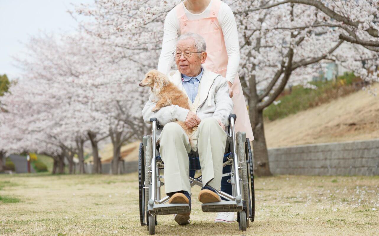 Nurse pushes elderly man holding dog in wheelchair