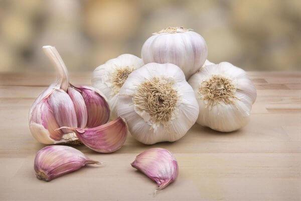 Garlic spread over wood