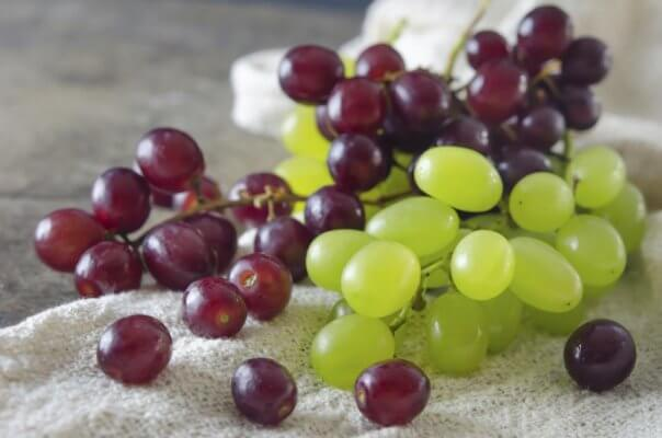 green and purple grapes on the vine