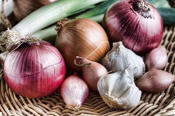 Onions of various varieties in basket