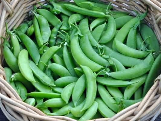 Snap peas in basket