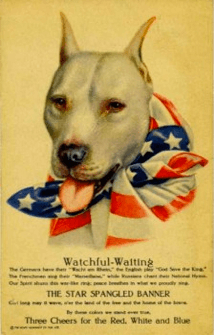 WWI American recruitment poster featuring a pit bull