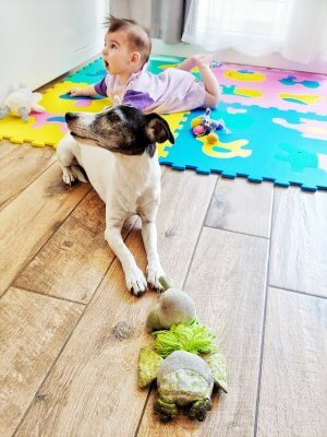 Family dog joins tummy time